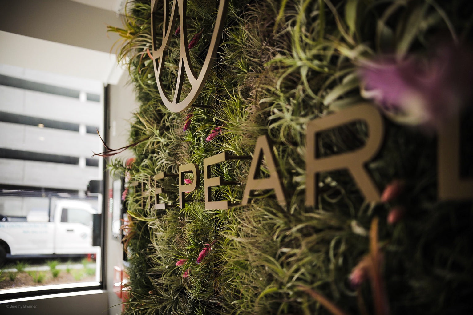 The Pearl Apartments - A Living Air Plant Design