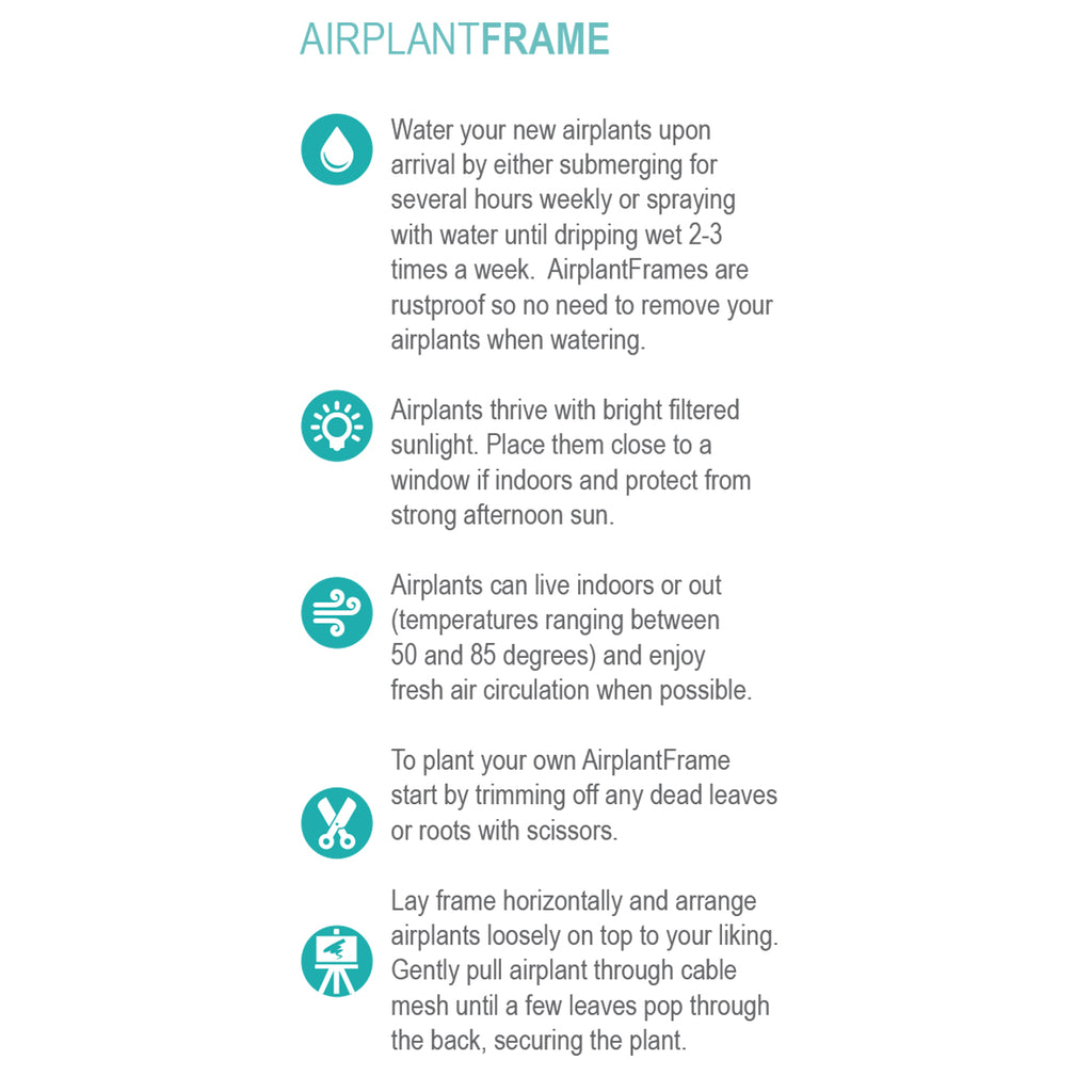 AirplantFrame – Wood Frame Addition
