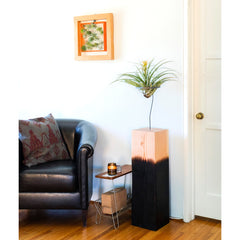 AirplantVessel – Giant Wood Planter