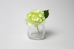 Flower Bud Vase Square - Clear