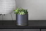Hasami Porcelain Planter Set (Black)