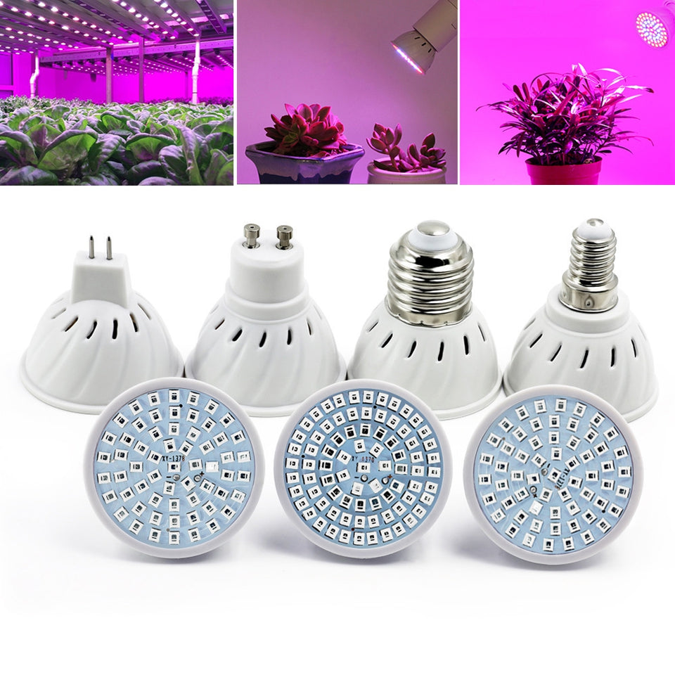 OMTO LED Plant Growth Bulb 220V  For Succulent Green Leaf Potted Plant