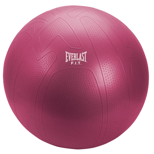 Everlast 65cm Pro Grip Fitness Ball - EE7500RS