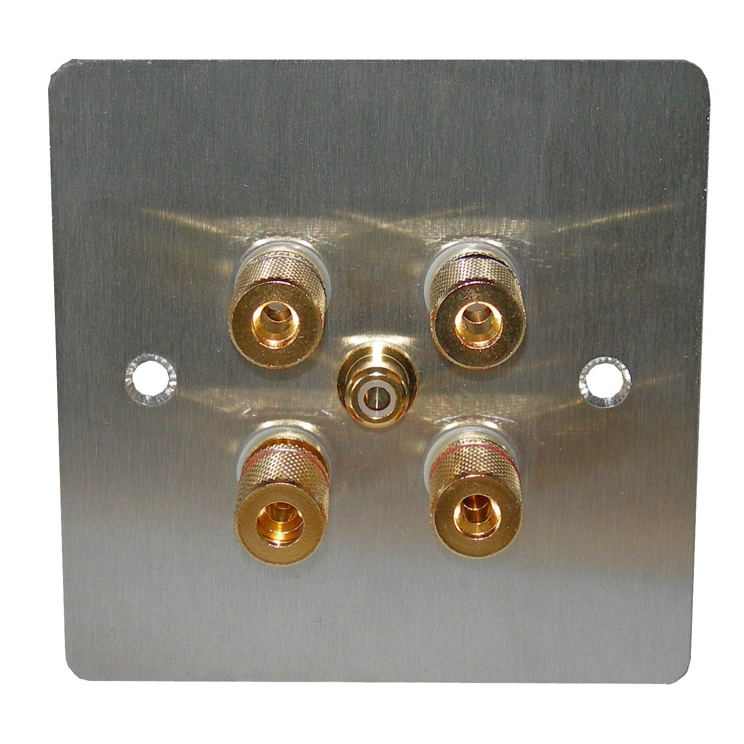 2.1 speaker plate steel with gold posts front