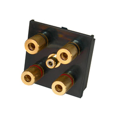 2.1 speaker plate with gold posts in black front