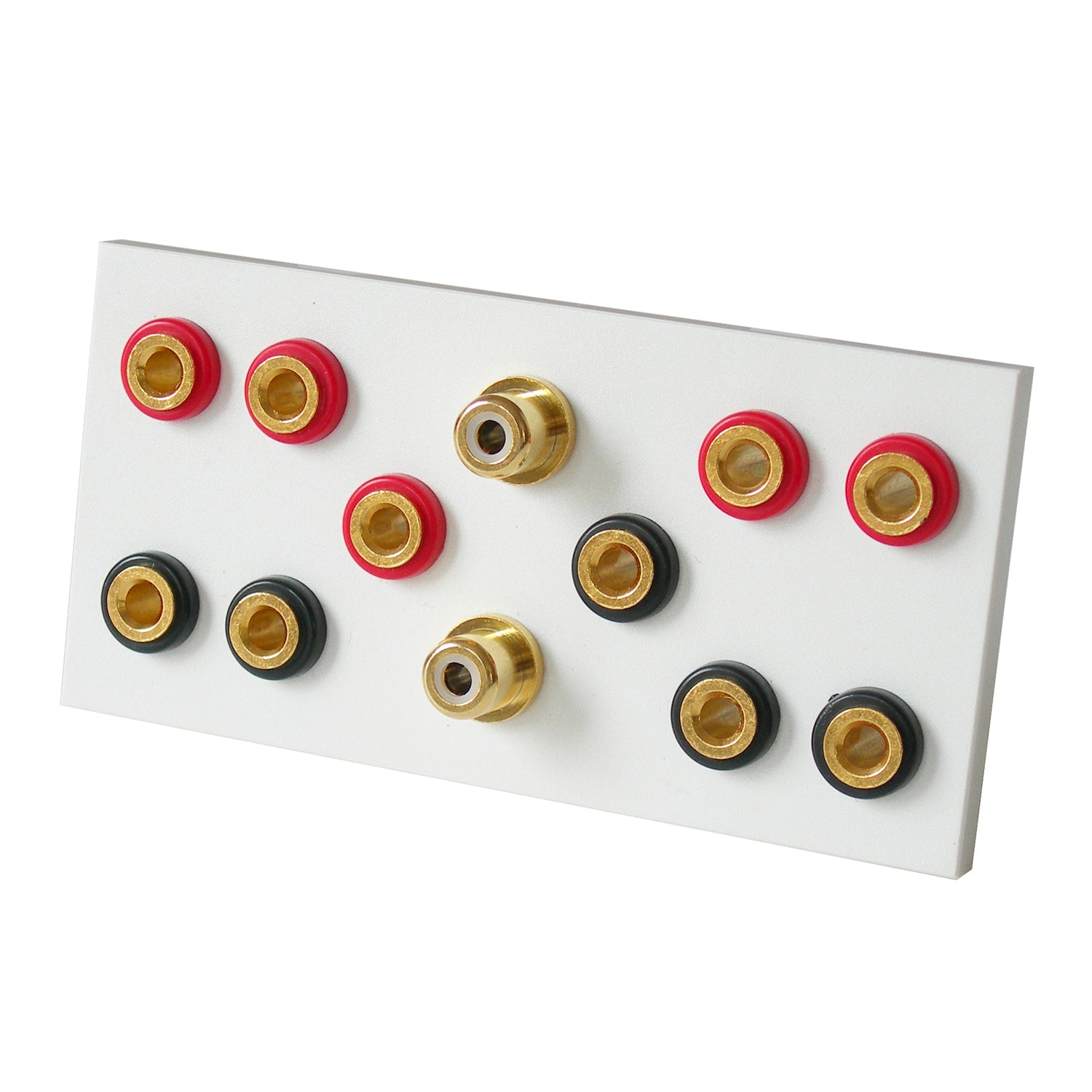 5.2 speaker module with flat terminals in white front