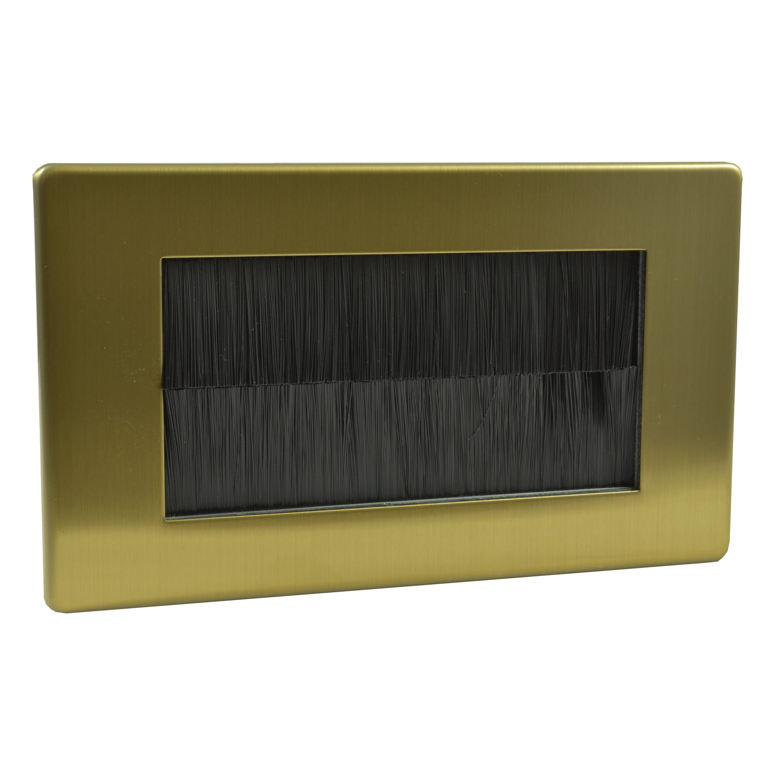 brushed brass brushplate black brush double gang XDBG4SBL