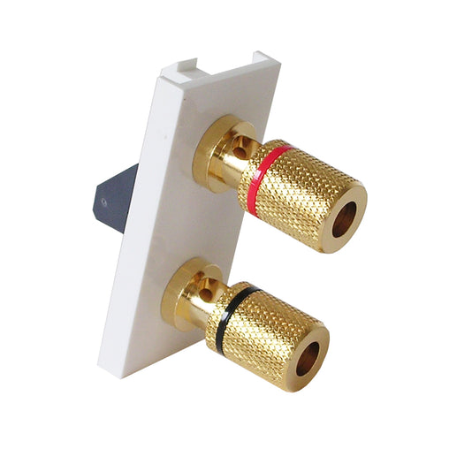 single speaker module with gold posts in white front