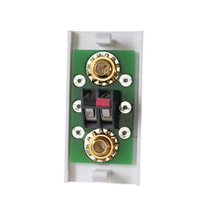 single speaker module with gold posts in white rear