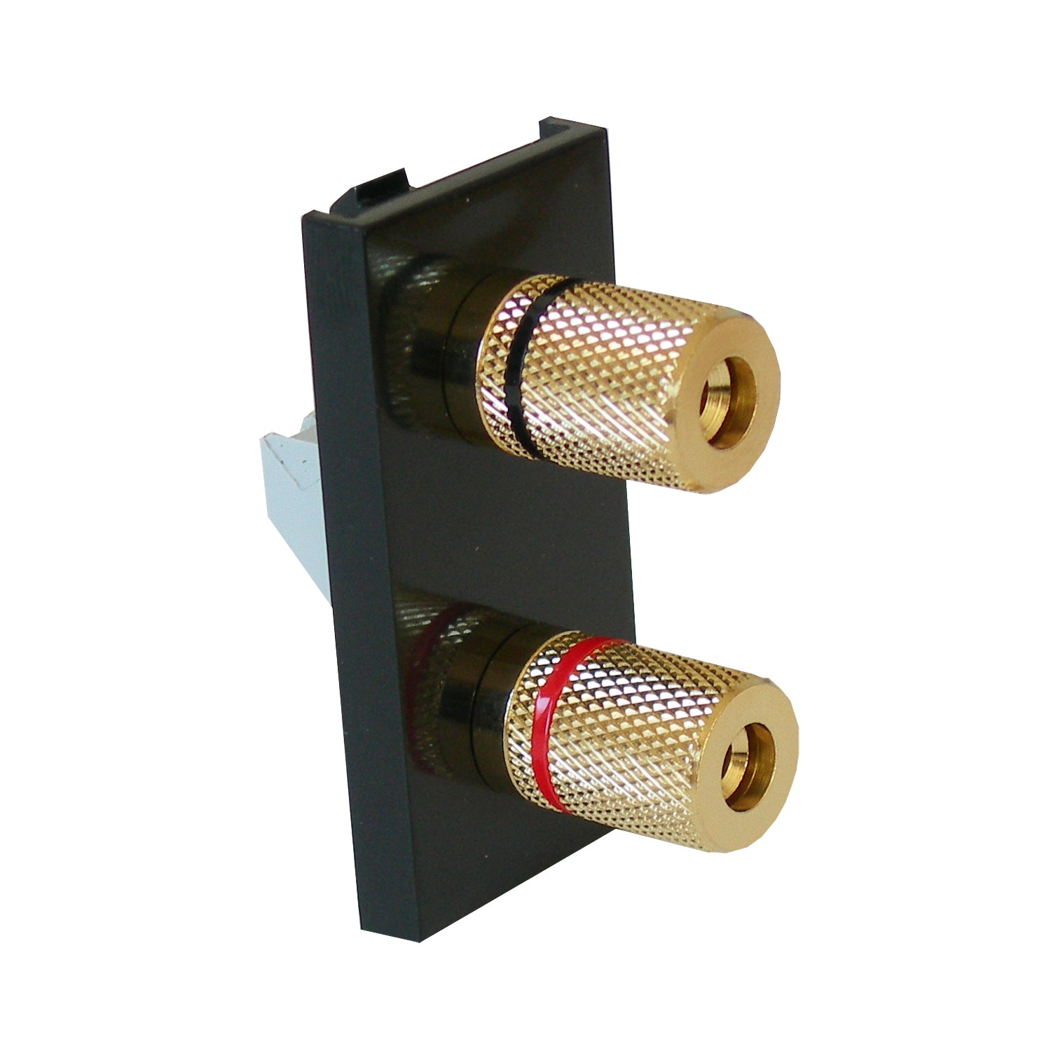 single speaker module black with gold posts front