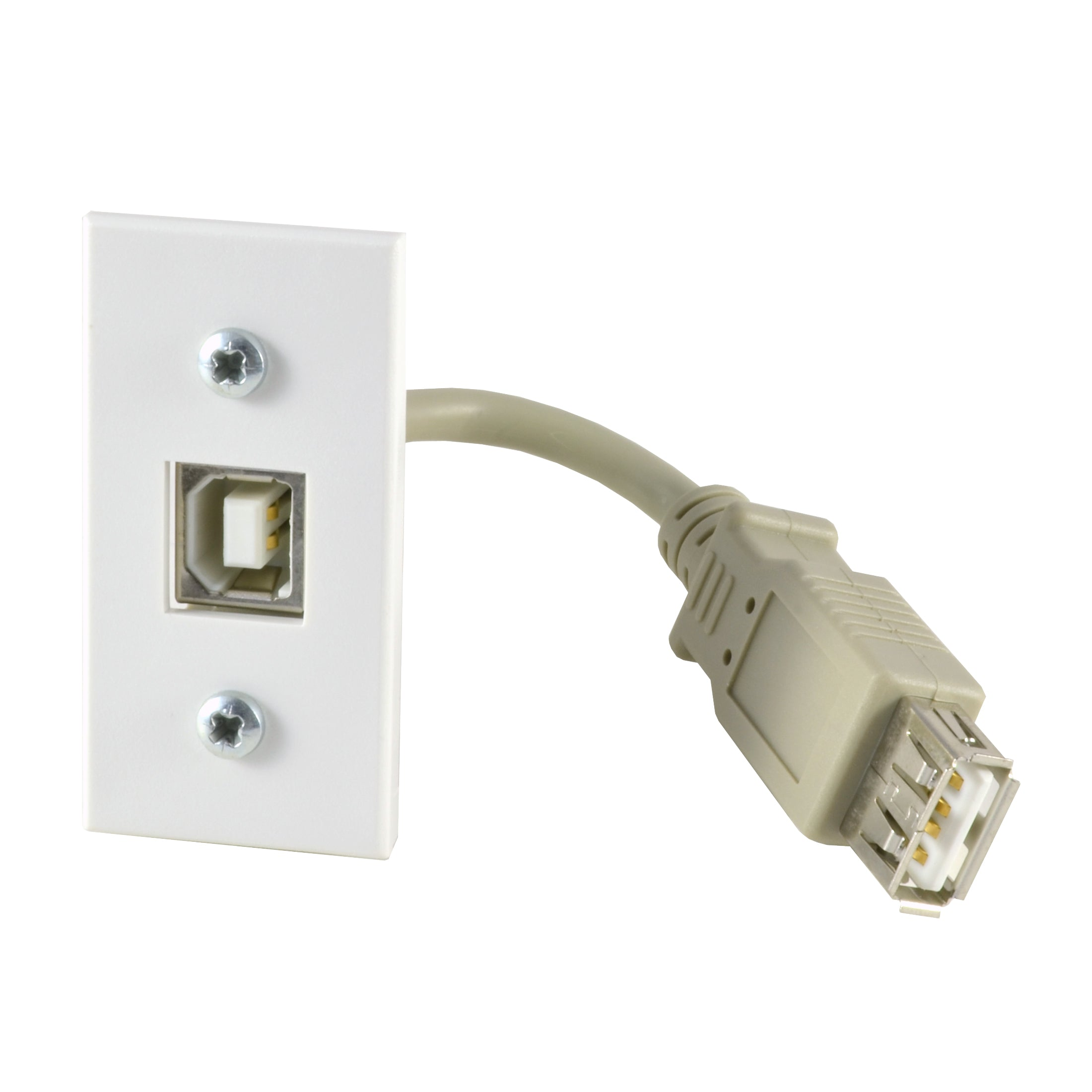 USB B module with tail white SX7016WH