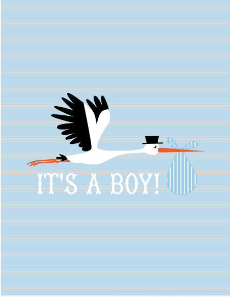 It's A Boy Note Card