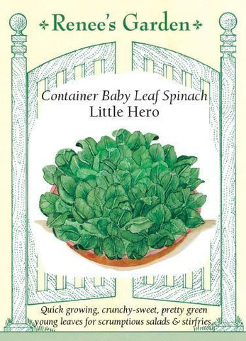 Spinach Container Little Hero