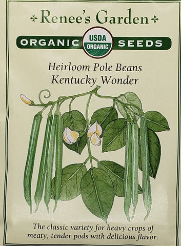 Bean Pole Kentucky Wonder Organic