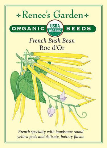 Bean Bush Roc D'or Organic