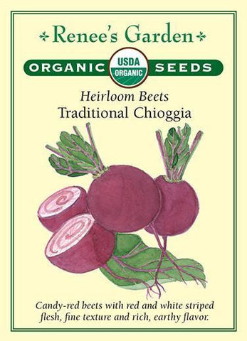 Beet Striped Chioggia Organic