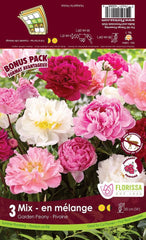 Peony Mixed 3 Pack