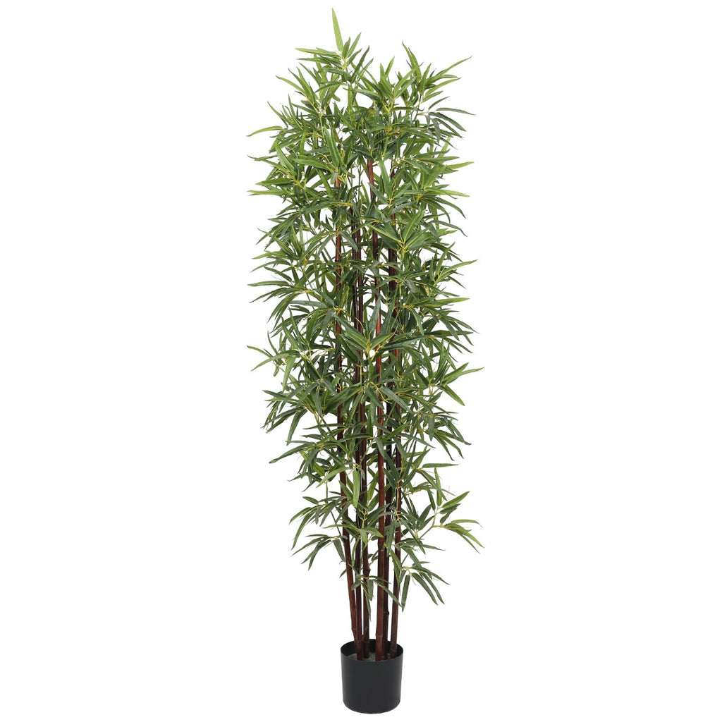 Artificial Bamboo Plant Dark Trunk (Potted) 180cm