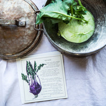 Load image into Gallery viewer, Kohlrabi Recipe Greeting card