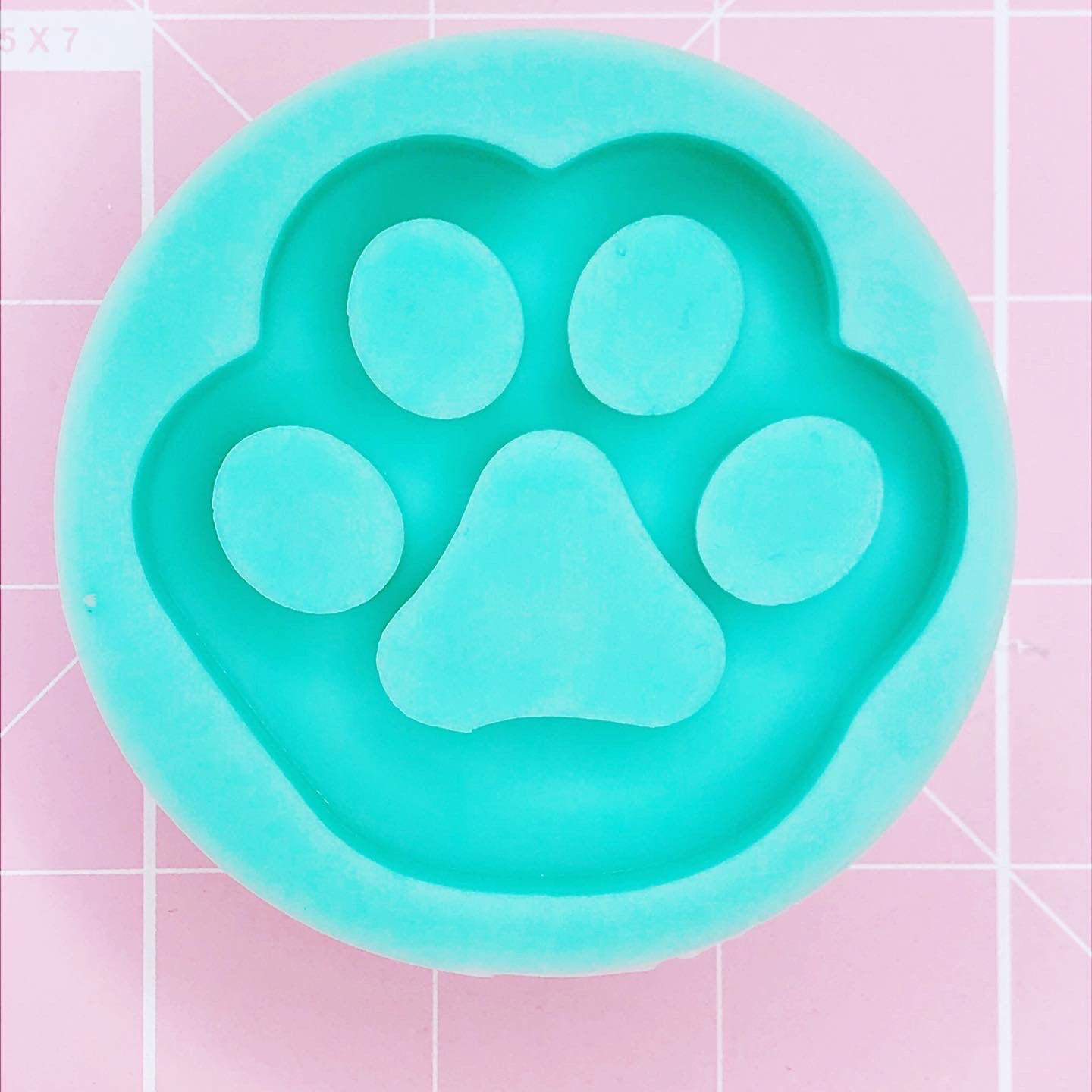 Round Mold -  Paw v2 (Backed Shaker) - Chala Atelier & Supplies
