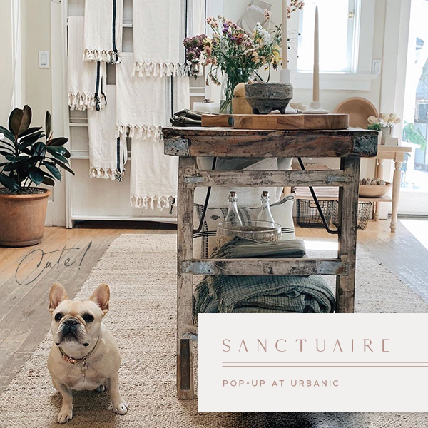 New Pop-Up at Urbanic in Venice — Sanctuaire home goods