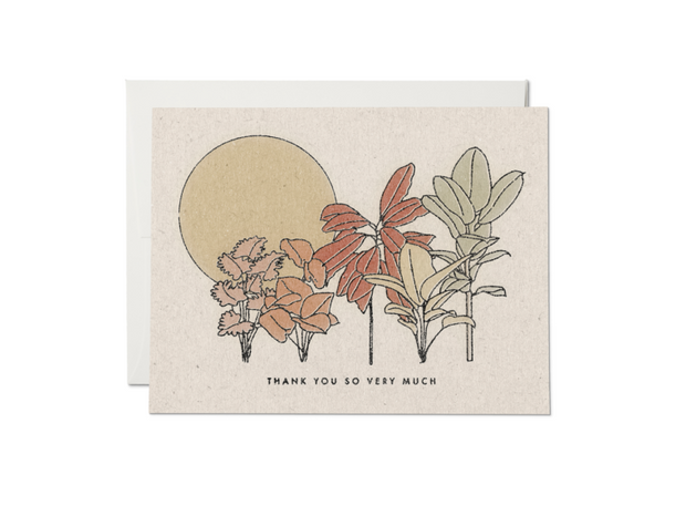 desert plants thank you card - single or set of 8