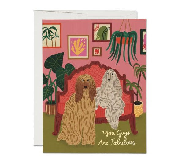 afghan dogs friendship card