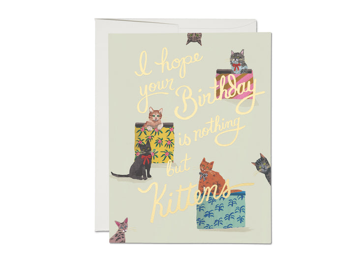 nothing but kittens gold foil birthday card
