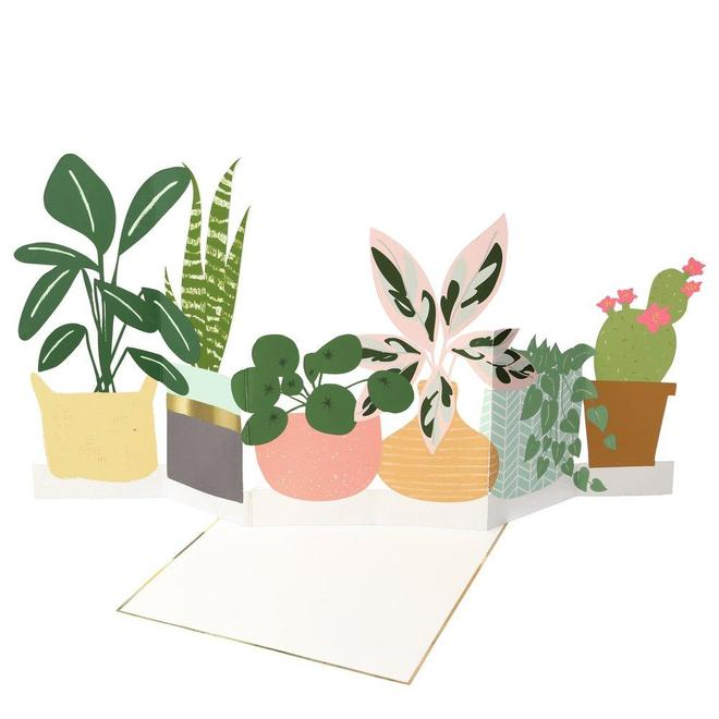 potted plant concertina fold-out card
