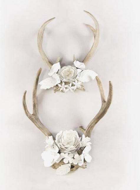 flower field antlers decor - natural & white