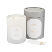 citrus grove 2-wick 11 oz candle