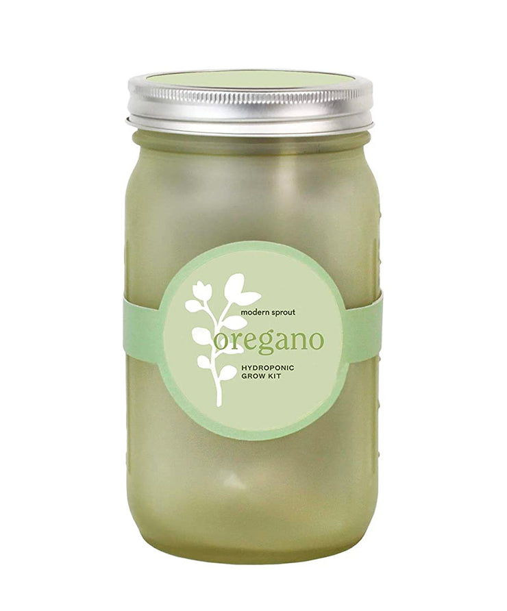 oregano indoor grow kit in green garden jar