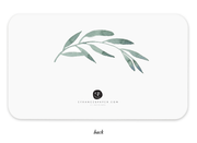 olive branch little notes cards - set of 85