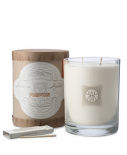 pumpkin 2-wick 11oz candle