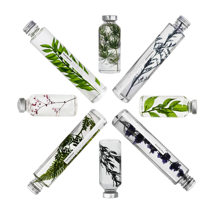 small bottled plant specimens