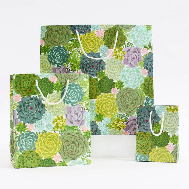 succulent gift bag - large size