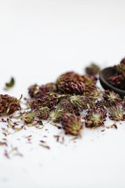 Red Clover Tea - loose whole buds