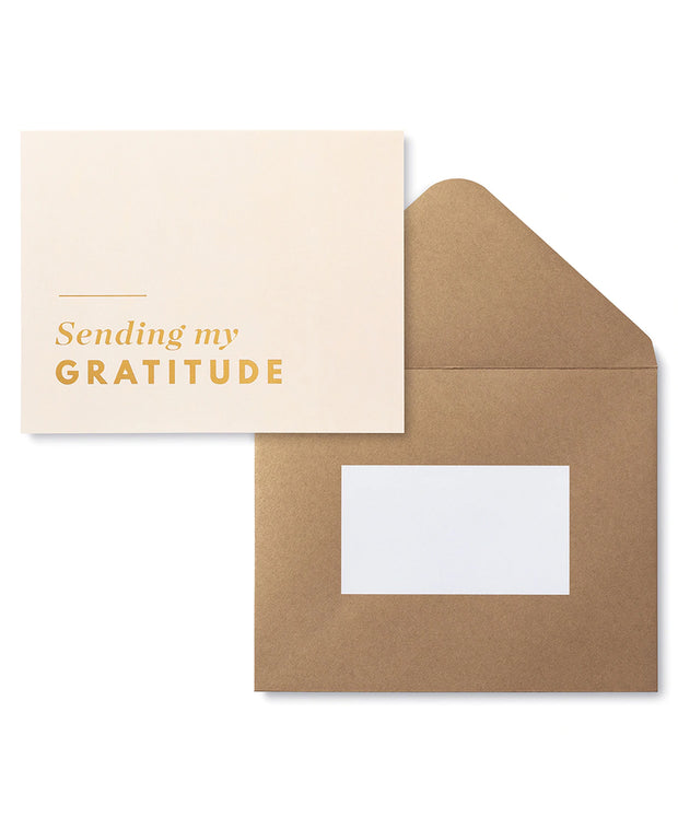 a year of gratitude card + journal set