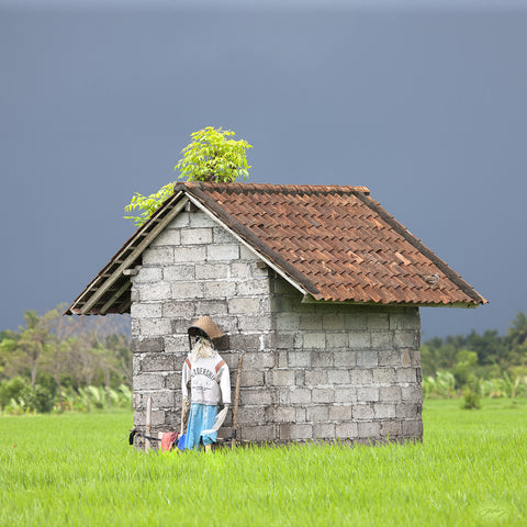 303 Rice Hut with Scarecrow, Bali Rice Fields (Square Print)