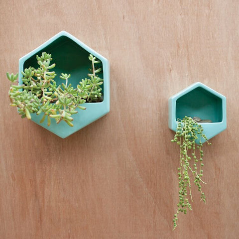 Turquoise Hexagon Wall Planter