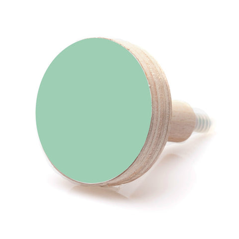 Round Wall Hook - Mint