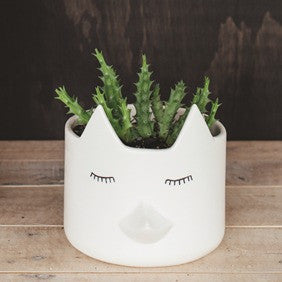 Wild Things planter