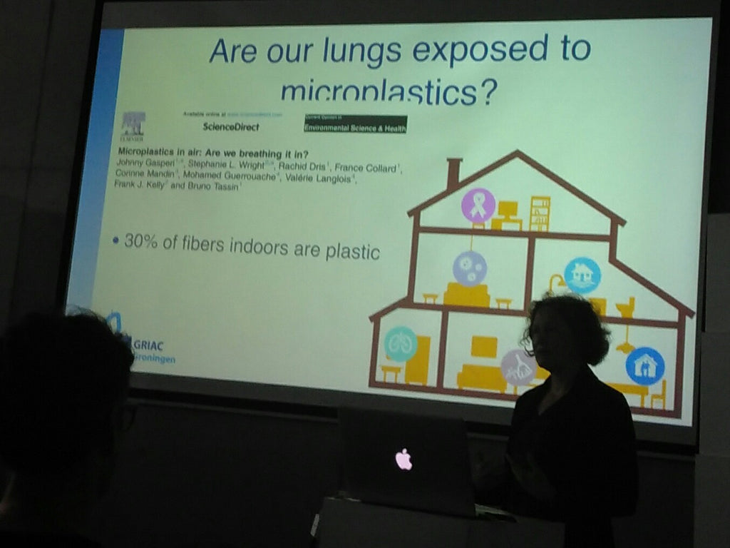 Prof Barbro N. Melgert University of Groningen Plastic Soup Foundation Microfiber Pollution Amberoot 4