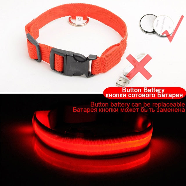 Glowing LED Dog Collar Anti-Lost Nylon Light Collar For Dogs Puppy at Night Cool Pug Dog Supplies Pet Products Accessories - DESI PANDA