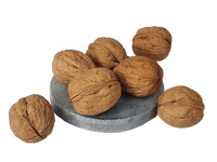 Walnut in Shell NSW 10kg