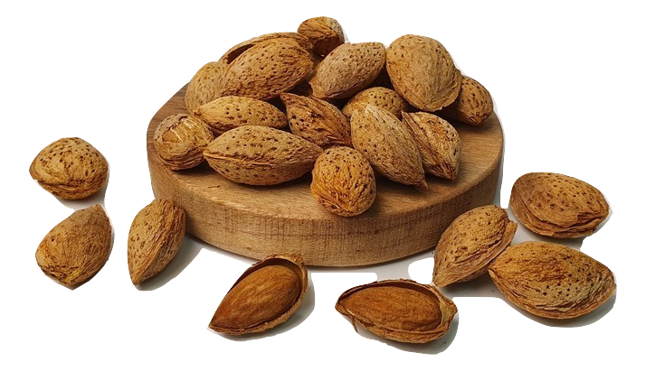 Australian Almonds in Shell