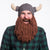 viking beard hat