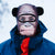 chimp ski mask