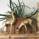 *LARGE* Mid Century Brass Pair of Deer