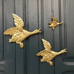 *EXTRA LARGE* Trio of Mid Century Brass Flying Ducks #A1